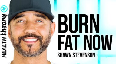 Health Expert on How to Actually Burn Body Fat and Lose Weight | Shawn Stevenson on Health Theory