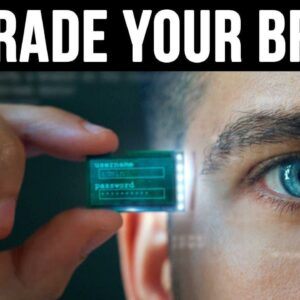 How To Hack Your Brain for Greater Success and Performance